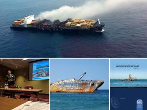 IMO news: Promoting wreck removal